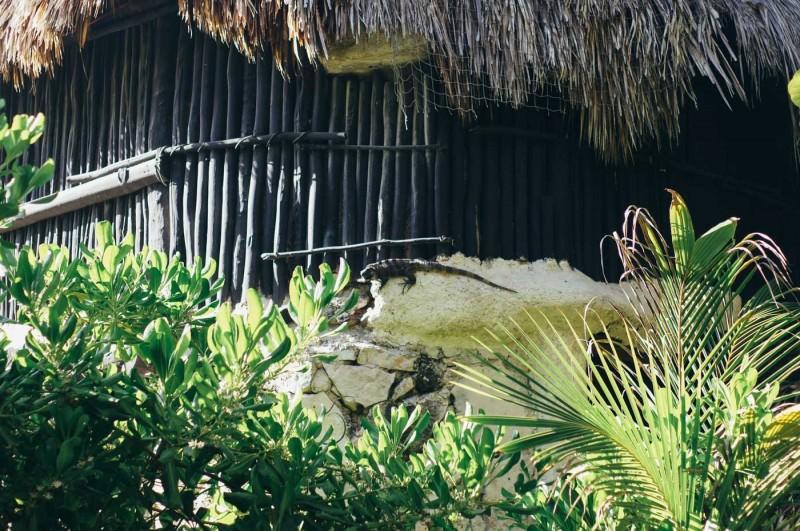 Luv Tulum Mexico