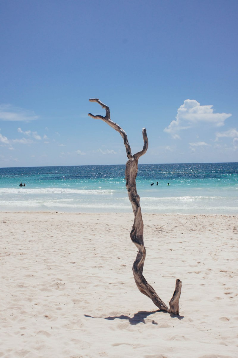 Luv Tulum Mexico