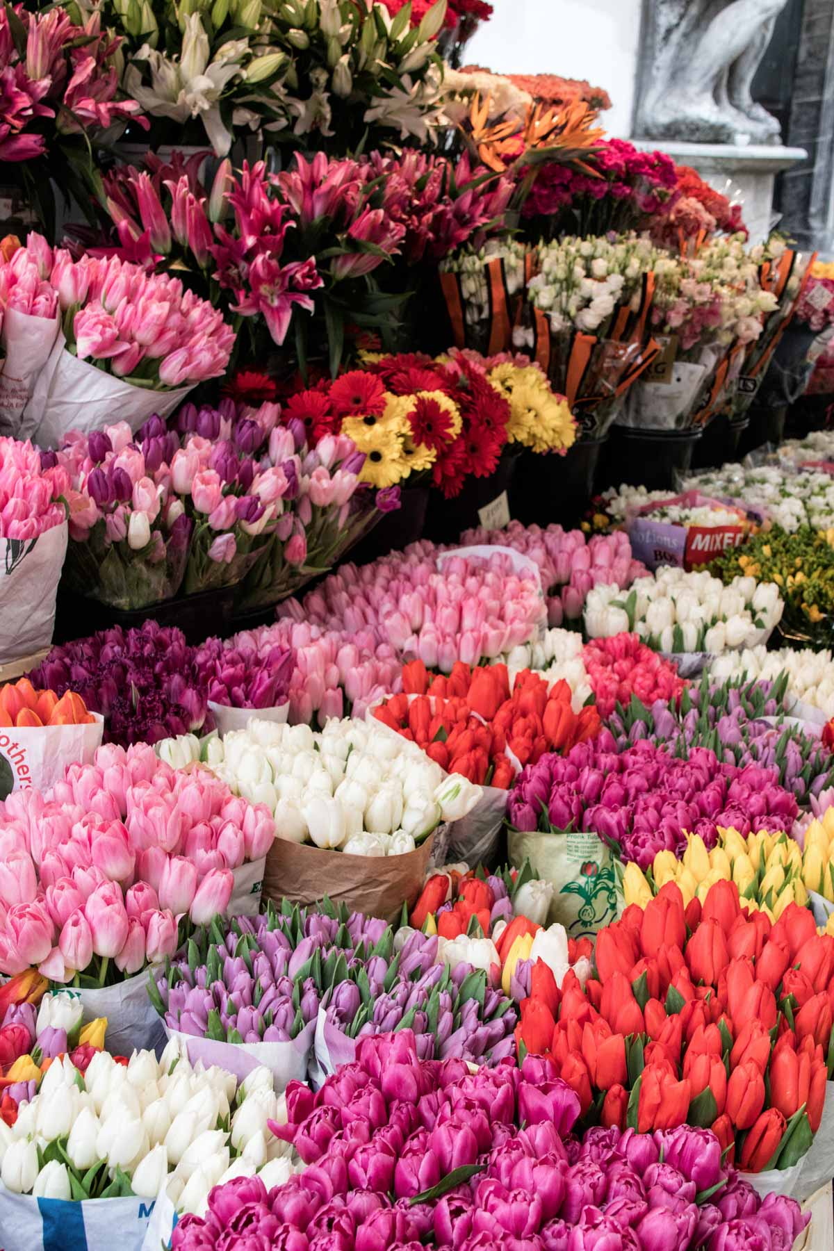 flower market Ljubljana