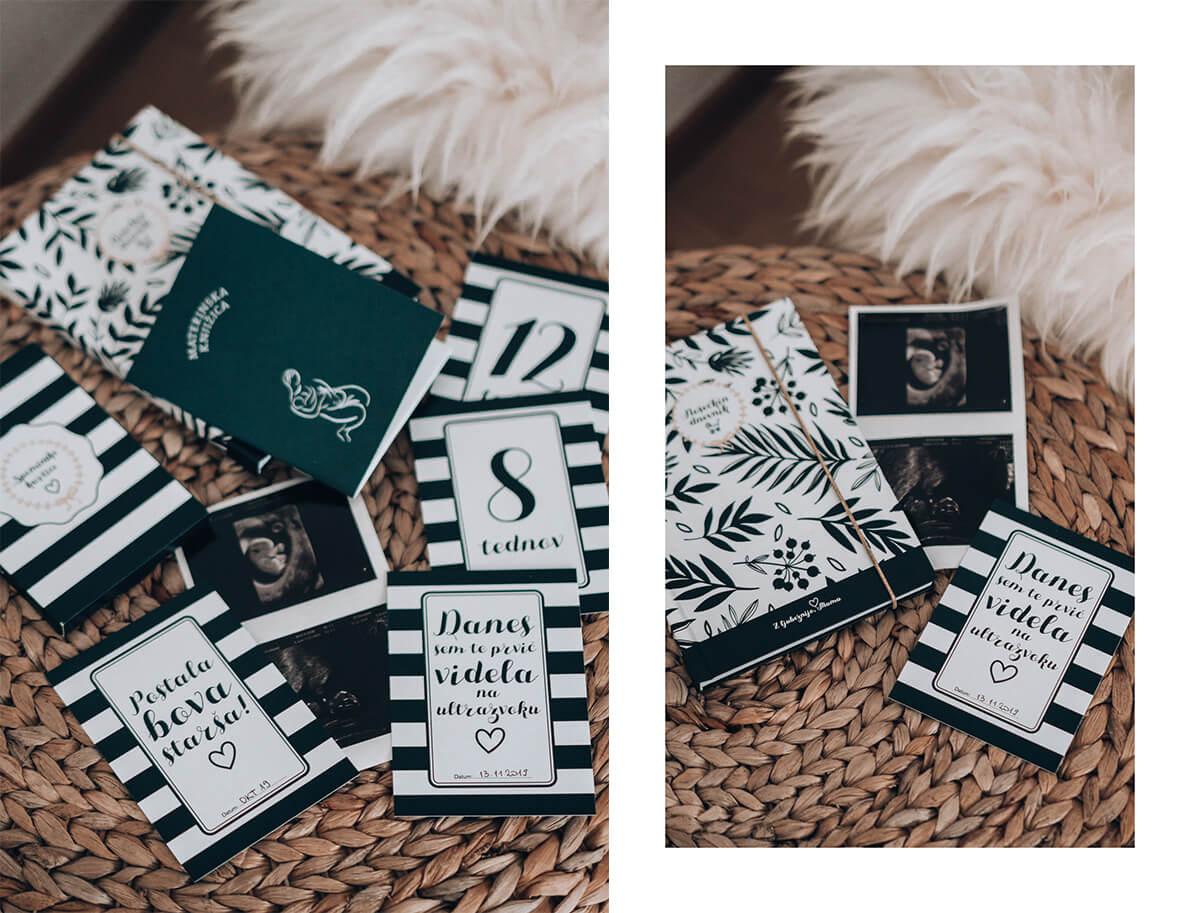 Nosečkin dnevnik